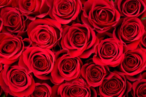 Valentine's Day DOs and DON'Ts